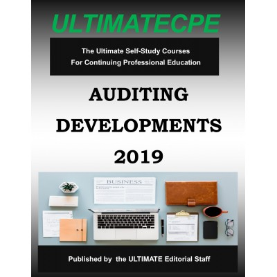 Auditing Developments 2019