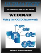 Using the COSO Framework