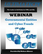 Governmental Entities and Cyber Frauds