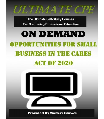 Opportunities for Small Business in the CARES Act of 2020